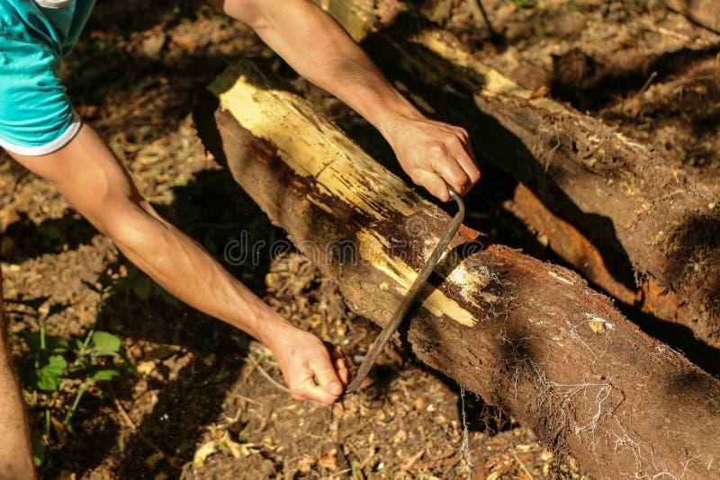 Las manos de un carpintero planearon la madera, lugar de trabajo fotografía de archivo libre de regalías