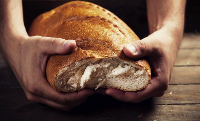 Las manos del panadero con un pan fotografía de archivo libre de regalías