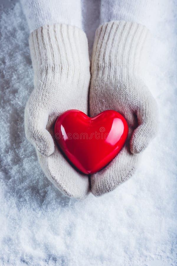 Las manos femeninas en blanco hicieron punto las manoplas con un corazón rojo brillante en un fondo de la nieve Amor y concepto d foto de archivo libre de regalías