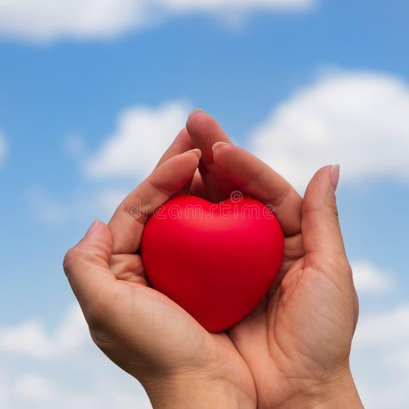 Las manos femeninas llevan a cabo suavemente un corazón rojo, el concepto de salud, la vida y el amor, contra el cielo azul fotos de archivo libres de regalías