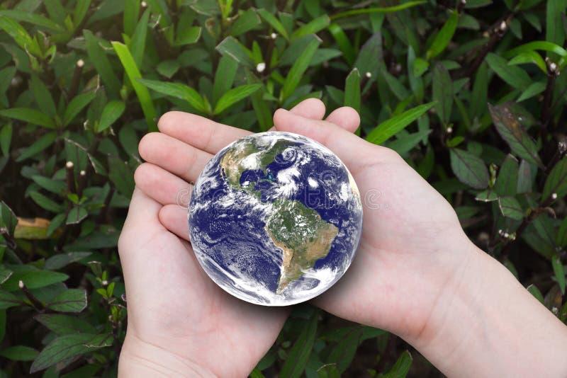 Las manos femeninas que sostienen la tierra con verde hojean fondo Envi imagen de archivo