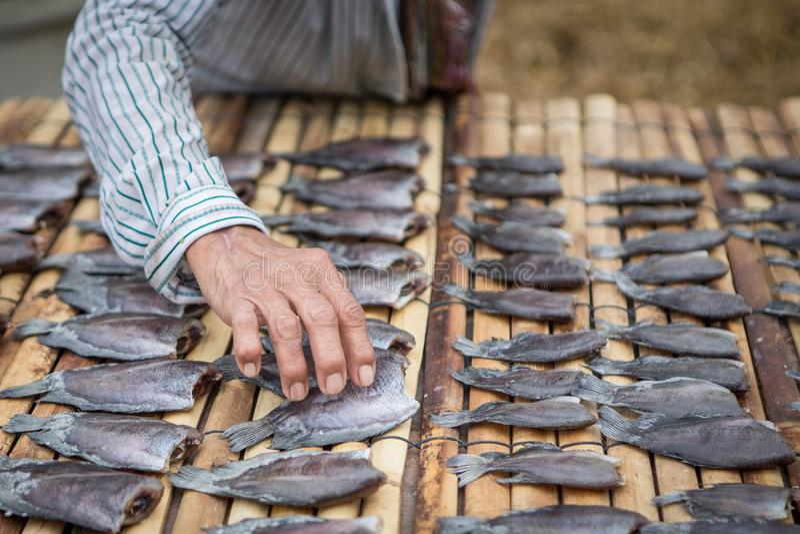 Las manos mantienen los pescados secos en una estera de bambú fotos de archivo libres de regalías