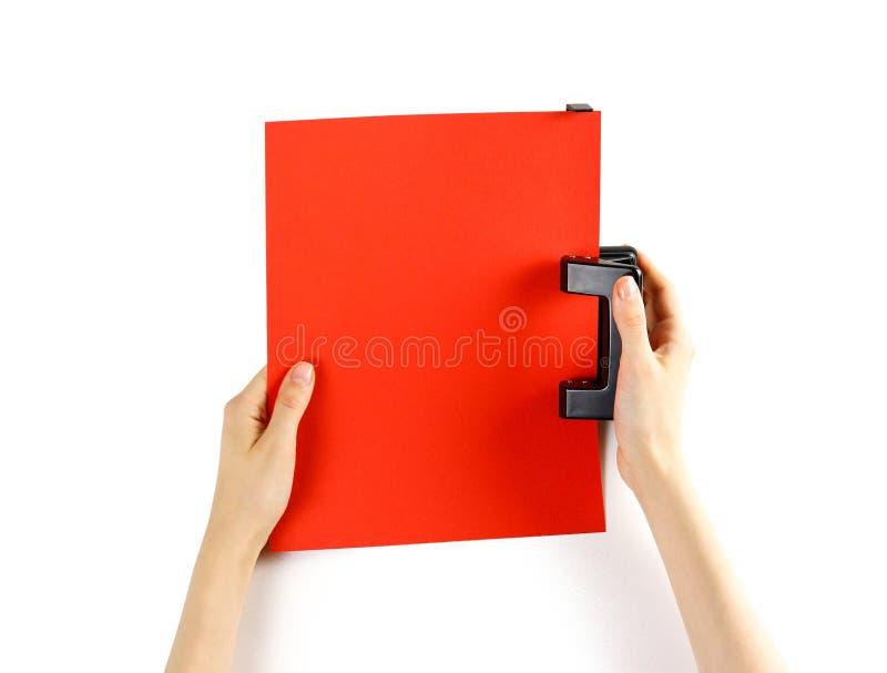 Las manos perforan el puncher de papel rojo en un fondo blanco Closeu fotografía de archivo libre de regalías