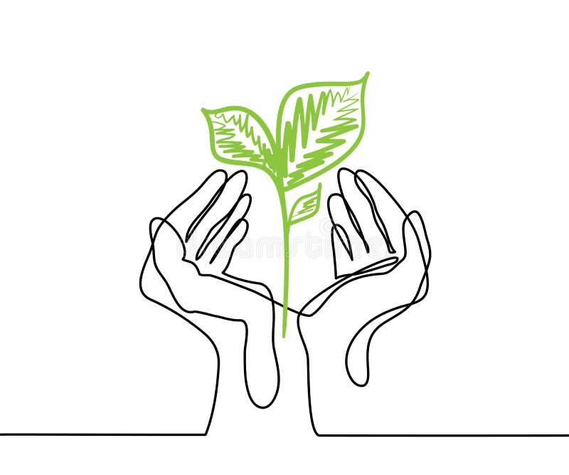 Las manos sostienen un almácigo vivo de la planta verde ilustración del vector
