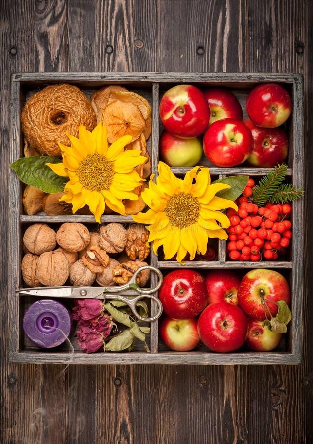 Las manzanas, nueces, florecen el girasol fotos de archivo libres de regalías