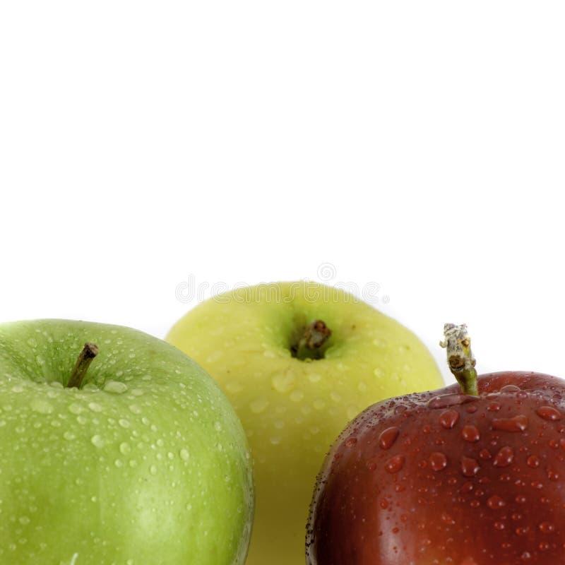 Las manzanas rojas, amarillas y verdes con el primer de las gotitas de agua tiraron en blanco con el espacio de la copia para el  fotografía de archivo