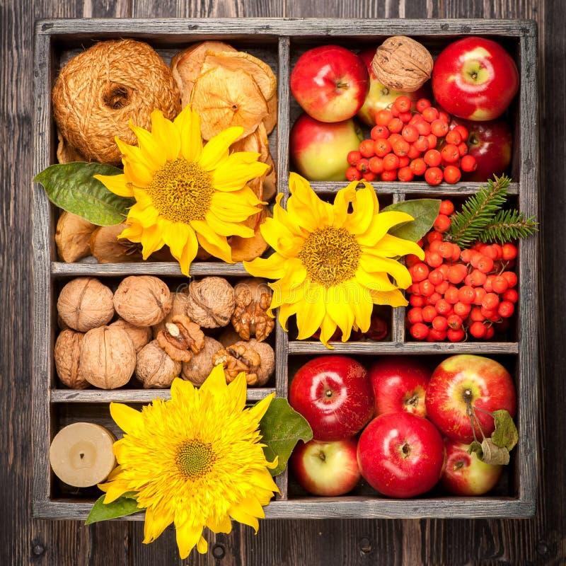 Las manzanas rojas, nueces, flores, girasoles, secaron manzanas imagen de archivo