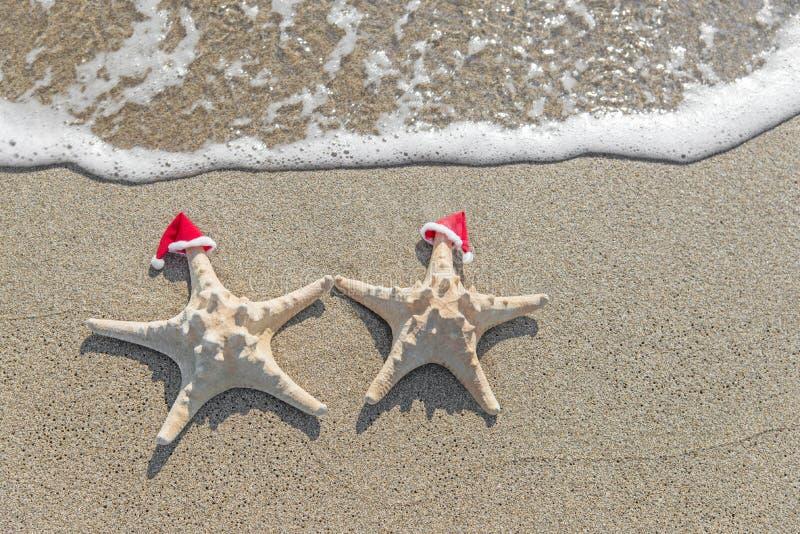 las Mar-estrellas se juntan en los sombreros de santa en la arena imágenes de archivo libres de regalías