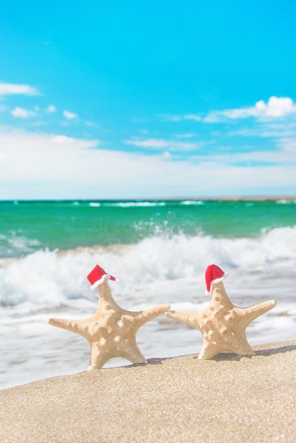 las Mar-estrellas se juntan en los sombreros de santa que caminan en la playa del mar imagen de archivo