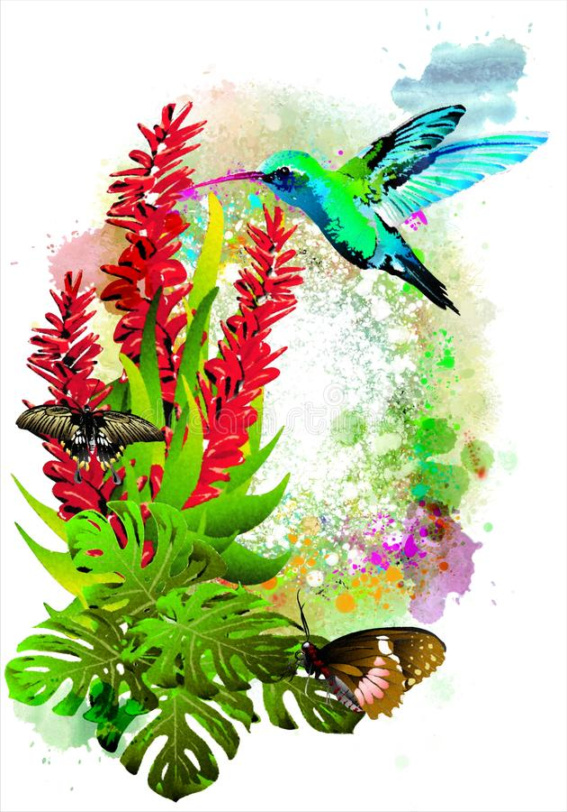 Las mariposas hermosas con las flores tropicales y los colibríes azules en la pintura colorida salpican stock de ilustración