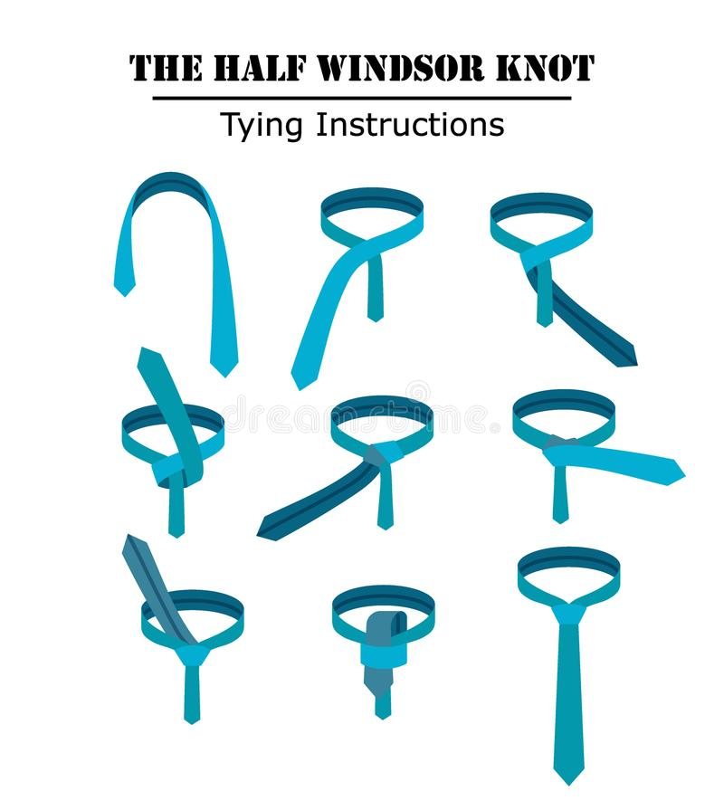 Las medias instrucciones del nudo del lazo de windsor aisladas en el fondo blanco Guía cómo atar una corbata Ejemplo plano adentr stock de ilustración