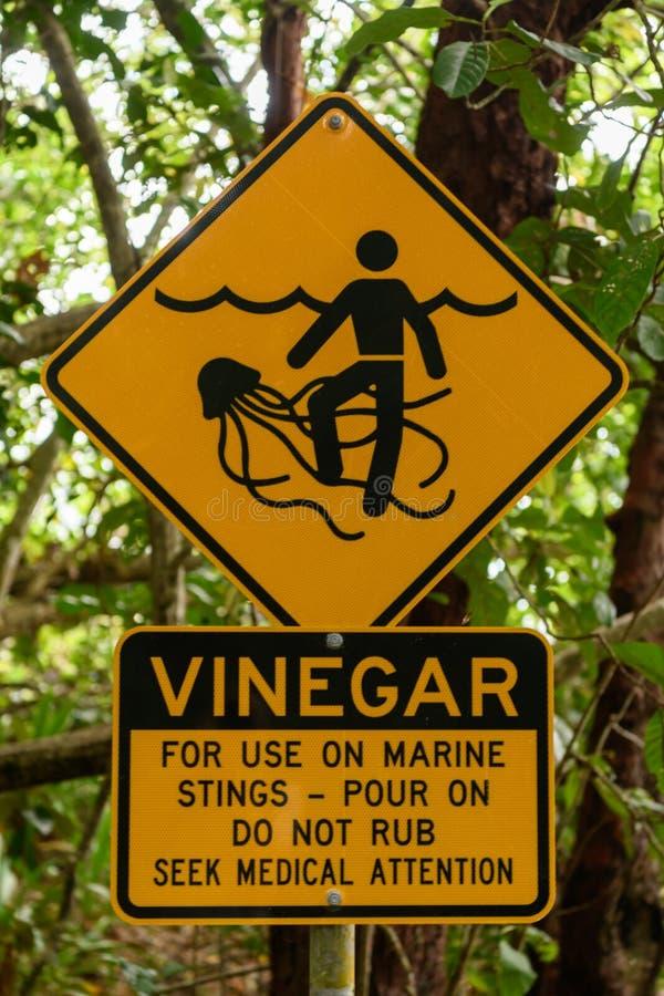 Las medusas amarillas de Marine Stinger peligros señal adentro Australia imagen de archivo libre de regalías
