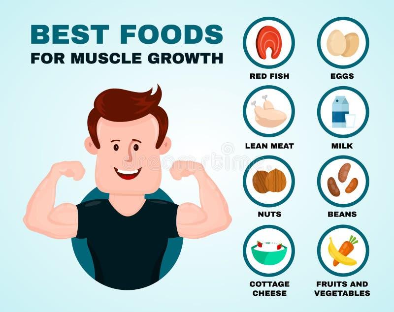 Las mejores comidas para el crecimiento del músculo infographic stock de ilustración