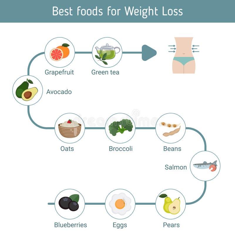 Las mejores comidas para la pérdida de peso ilustración del vector