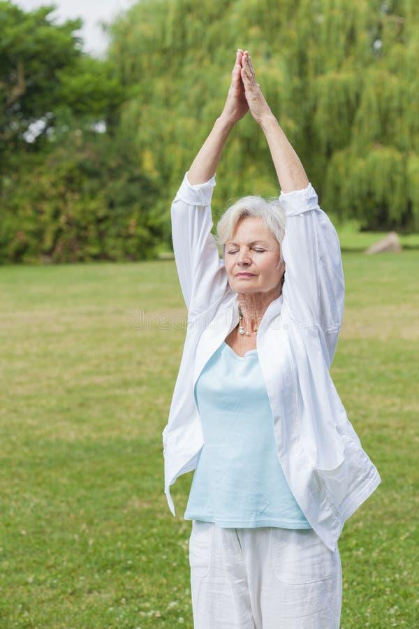 Las mejores mujeres del ager que practican ji del tai de la hormiga de la yoga fotos de archivo