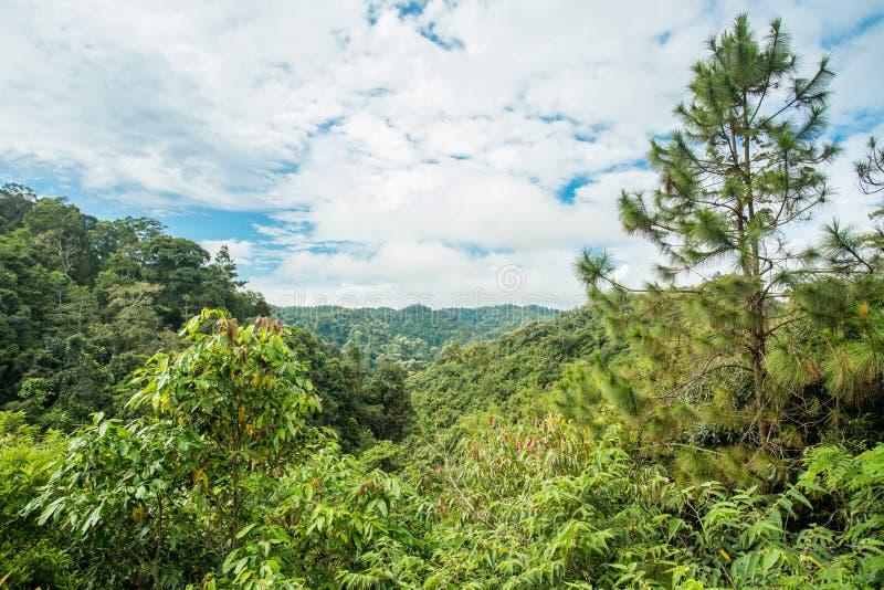 Las montañas de Tailandia fotos de archivo