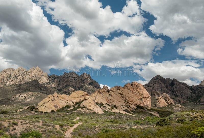 Las montañas del órgano en New México fotos de archivo