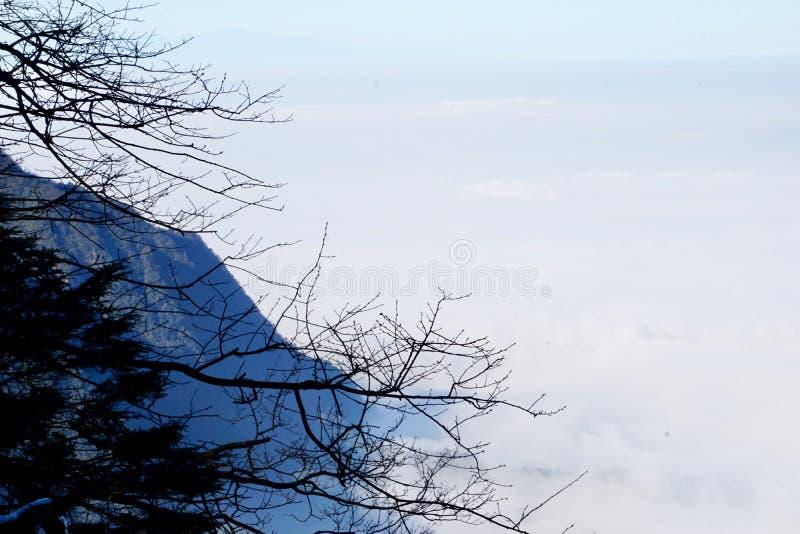 Las montañas pasan a través de las nubes, y las ramas del ciprés se pegan fuera del acantilado fotos de archivo libres de regalías