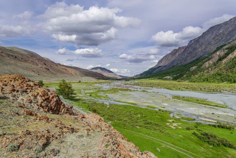 Las montañas River Valley florecen verano imagen de archivo libre de regalías