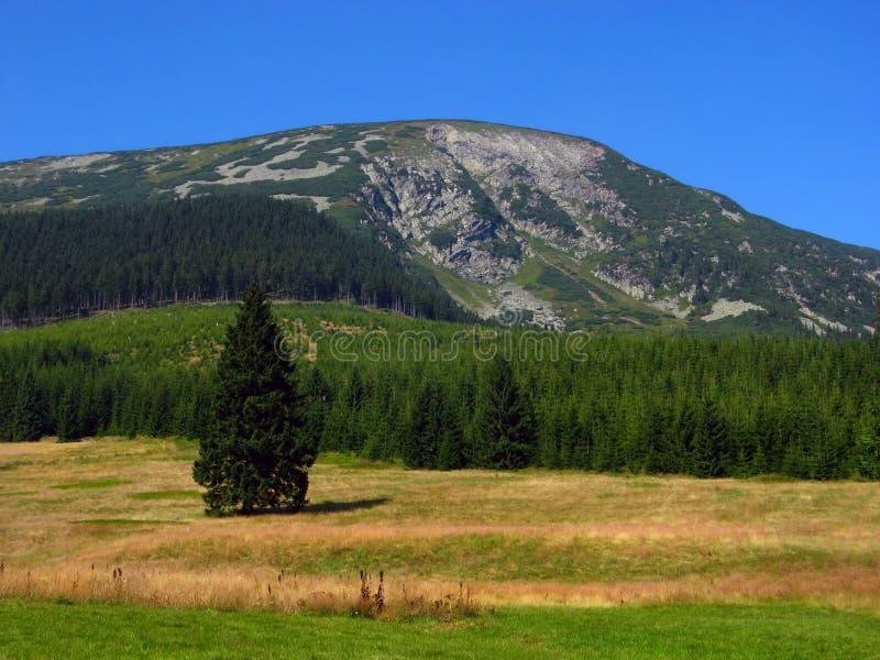 Las montañas y los valles imagen de archivo libre de regalías