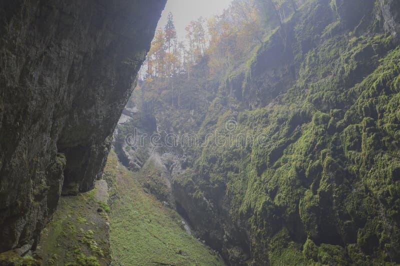 Las montañas y las rocas cubiertas con un musgo verde fotografía de archivo libre de regalías