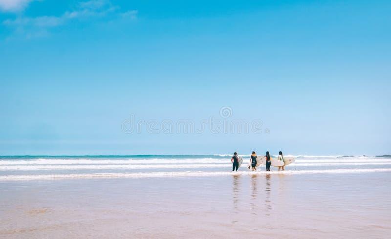 Las muchachas de las personas que practica surf del grupo con los tableros permanecen en línea de la resaca del océano y alistan  imagen de archivo libre de regalías