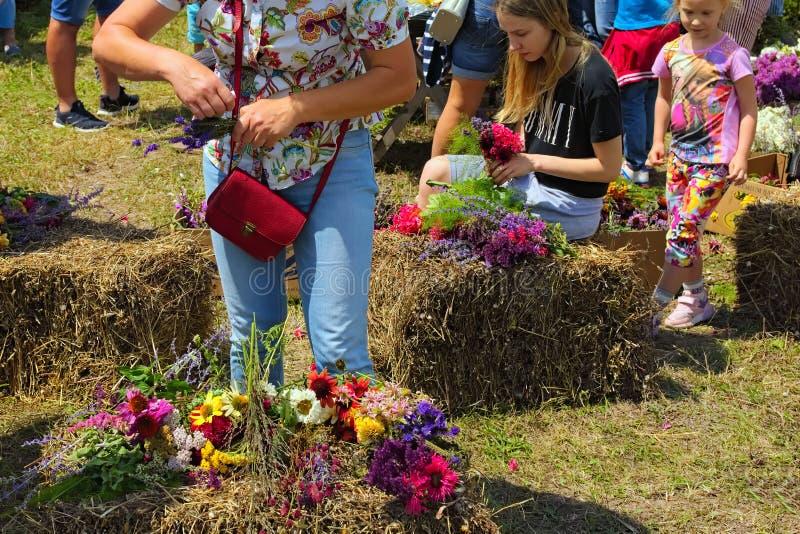 Las muchachas están tejiendo las guirnaldas de las flores salvajes Concepto del verano Tradición ucraniana maravillosa imágenes de archivo libres de regalías