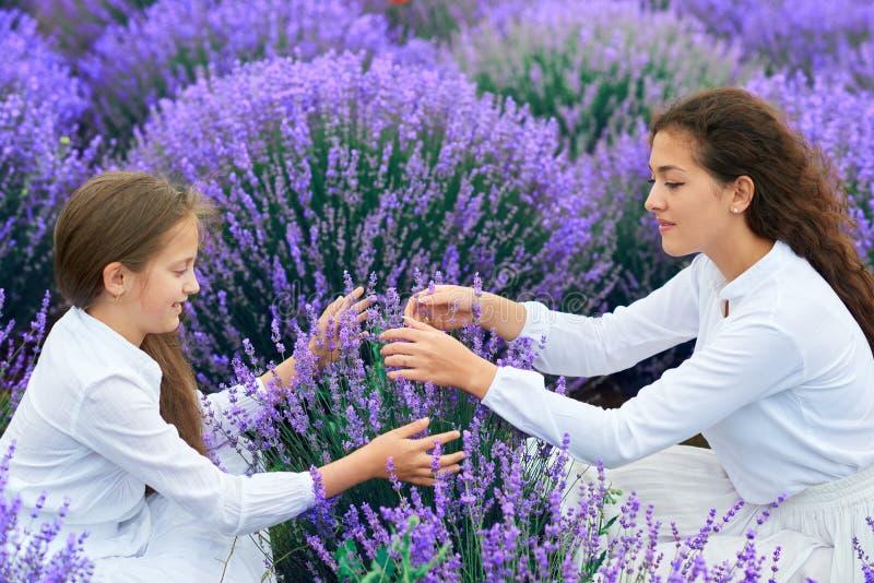 Las muchachas est?n en el campo de flor de la lavanda, paisaje hermoso del verano foto de archivo