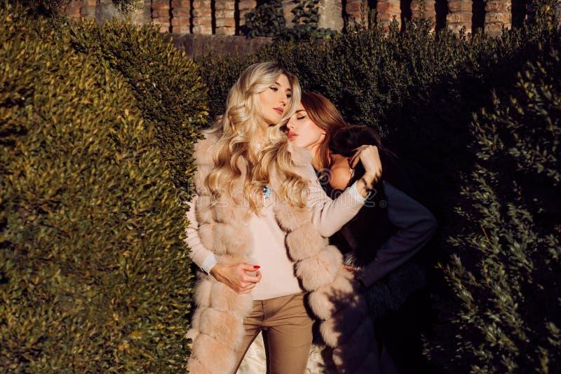 Las muchachas forman modelos llevan la ropa peluda Forma de vida de lujo del encanto Ropa caliente Equipo de la moda Abrigos de p fotografía de archivo libre de regalías