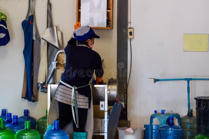 Las mujeres asiáticas trabajan en las fábricas del agua potable Instalación de producción no estándar del agua potable fotografía de archivo libre de regalías
