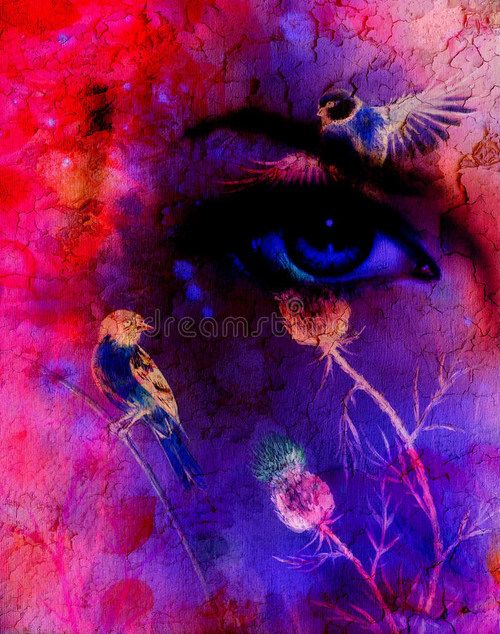 Las mujeres azules observan la emisión encima de encantar de la flor, con el pájaro en fondo abstracto rosado libre illustration