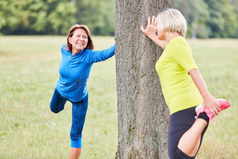 Las mujeres mayores calientan con estirar ejercicio fotografía de archivo