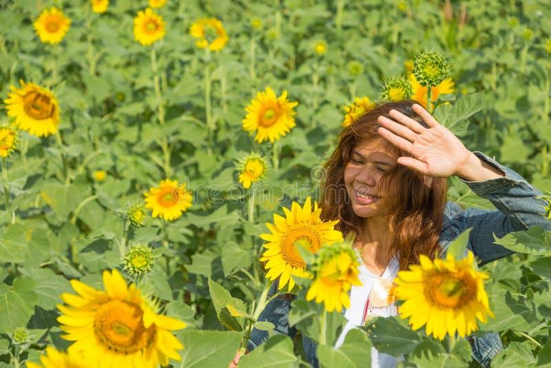Las mujeres son protegen su cara contra luz del sol en campo de los girasoles imagenes de archivo