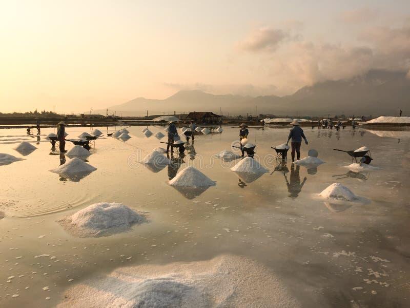 Las mujeres vietnamitas que trabajan en la sal colocan en Ninh Thuan, Vietnam foto de archivo