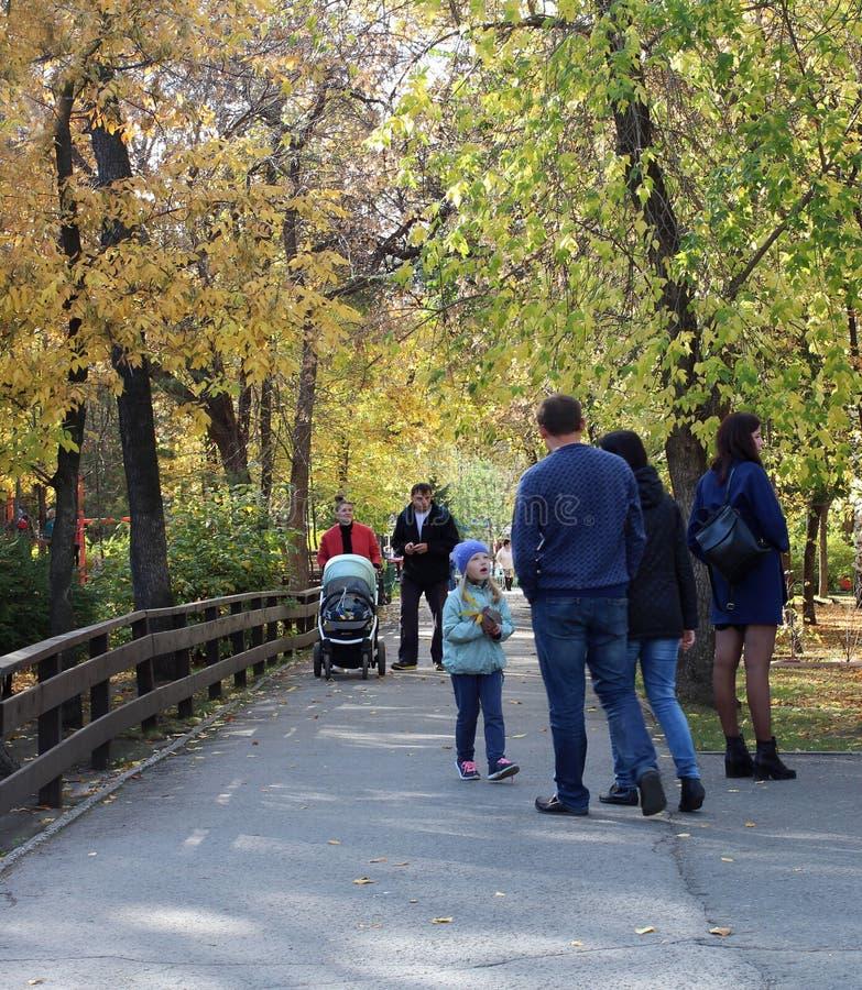 Las mujeres y los niños de los hombres caminan en un parque hermoso en el verano 2018 de Novosibirsk del parque de Kirov del otoñ imagen de archivo