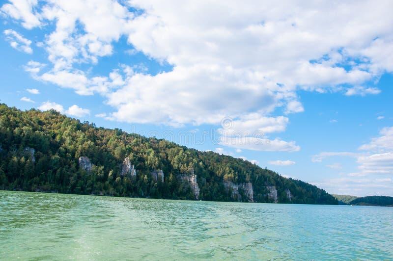 Las na banku jezioro zdjęcia royalty free