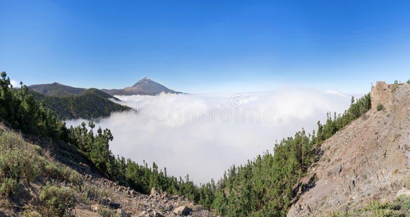Las nad chmury w parku narodowym Tenerife z Teide zdjęcia stock