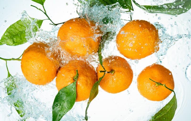 Las naranjas riegan el chapoteo foto de archivo