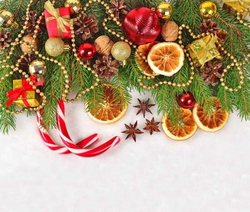 Las naranjas y los conos secados, las decoraciones de la Navidad y el spruse ramifican fotografía de archivo