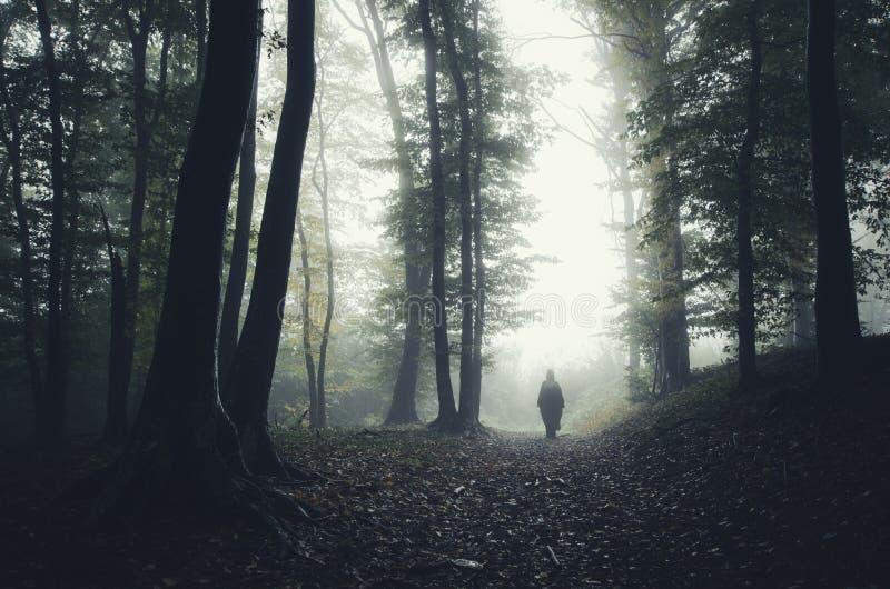 las nawiedzonego obrazy stock