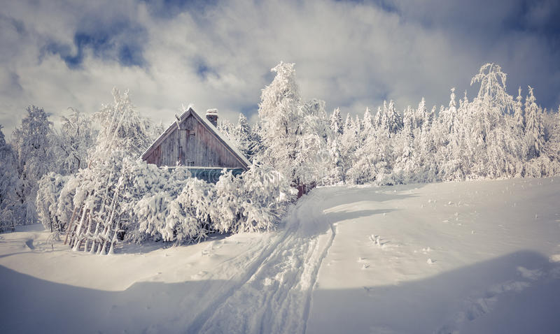 Las nevadas cubrieron los árboles y las casas en el pueblo de montaña fotos de archivo