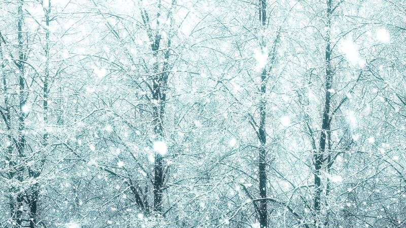 Las nevadas globales grandes adicionales mega colocan invierno del árbol almacen de video