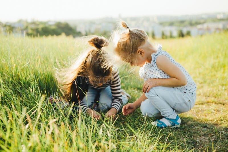 Las niñas están mirando insectos en la hierba verde en el campo fotos de archivo libres de regalías