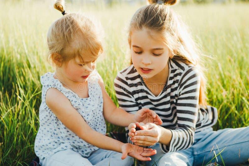 Las niñas están mirando insectos en la hierba verde en el campo fotografía de archivo libre de regalías