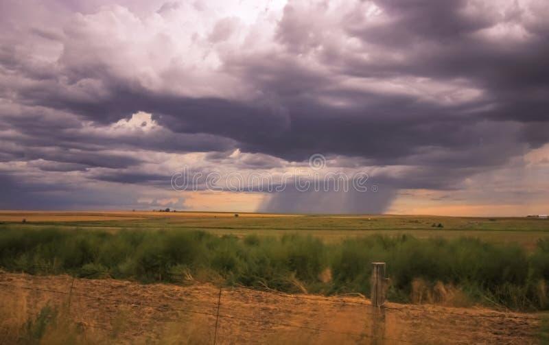Las nubes de tormenta construyen sobre la pradera imagen de archivo