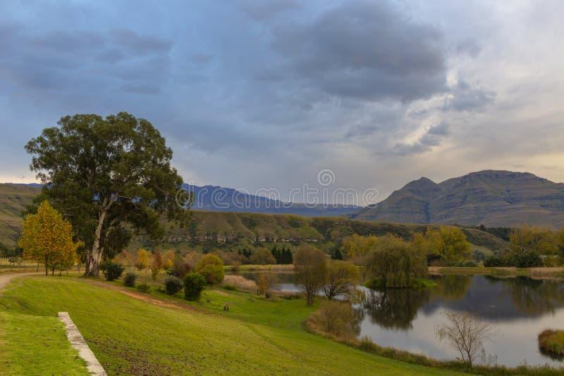 Las nubes y el otoño colorearon árboles en luz de la madrugada foto de archivo libre de regalías