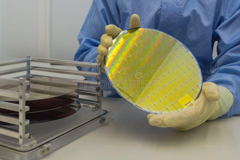 Las obleas de silicio en la caja de acero del tenedor sacar en guantes una oblea son a mano una parte fina del material del semic imagen de archivo libre de regalías