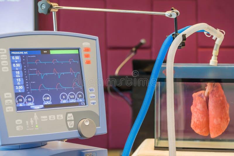 Las ondas del ECG de la presión arterial en el monitor para el sitio de ICU imágenes de archivo libres de regalías