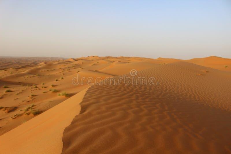 Las ondulaciones de la bobina de las arenas de Wahiba en Omán fotos de archivo