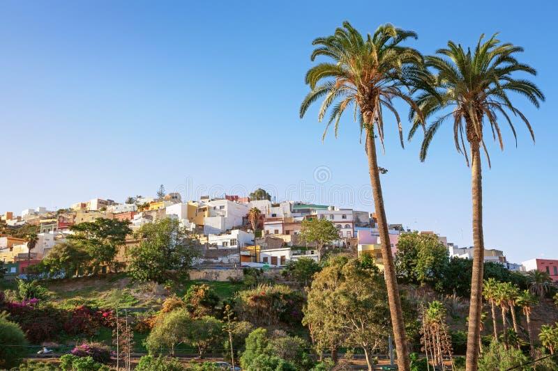 Las Palmas de Gran Canaria, distrito residencial, palmeiras e céu claro imagens de stock